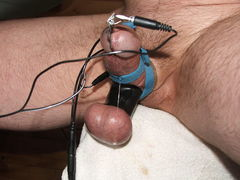 Pics of cock and ball torture